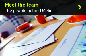 Melin Consultants Team